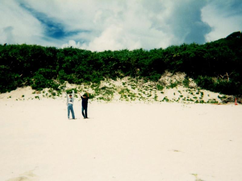 北部の砂浜