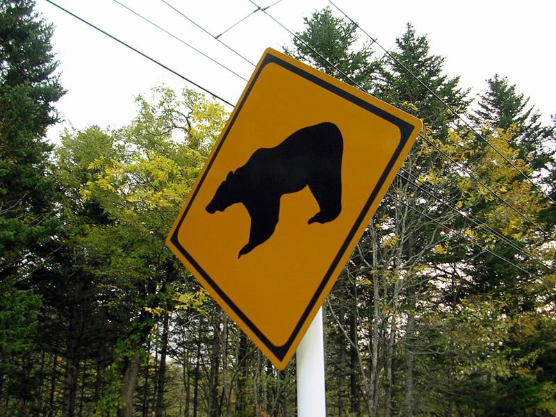 動物注意標識ヒグマ