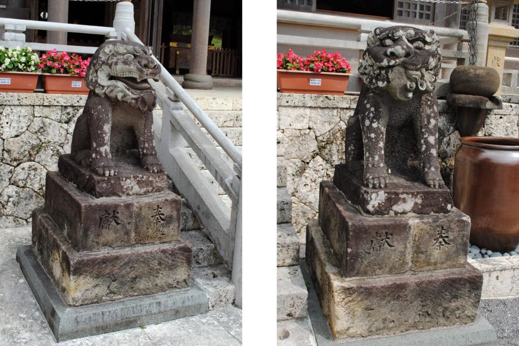 普天満宮の狛犬